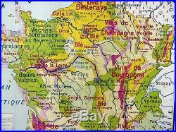 Carte scolaire ancienne France Agriculture / Forêts Brunhes type Vidal Lablache