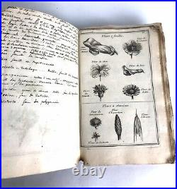 Manuscrit de classification botanique XIXE
