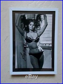 Sophia Loren. Autographe